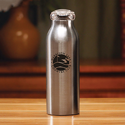 POLAR SILVER BOTTLE - 20 OZ.